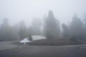 晨霧中的美女平