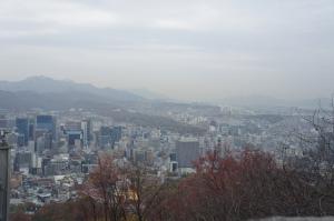 南山公園鳥瞰市景