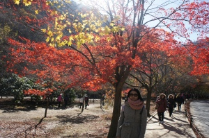 內藏山(4)