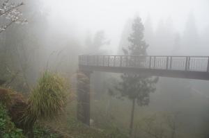 阿里山—沼木公園(1)