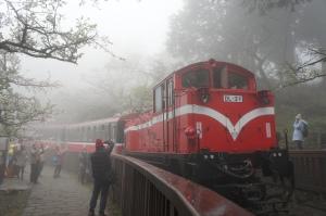 阿里山—小火車(1)
