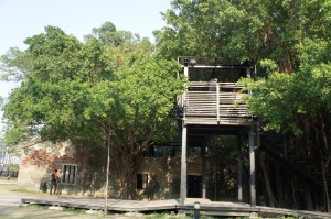 安平樹屋(1)