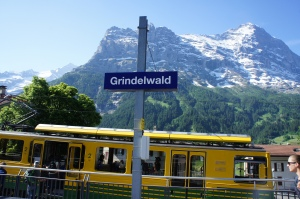 Grindelwald格林德瓦 (1)