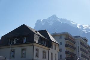 Grindelwald格林德瓦 (2)