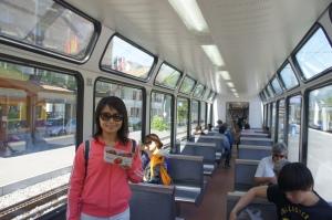 列車內仿如大銀幕的大窗