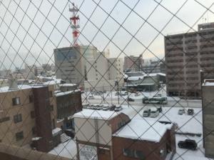 旭川—酒店房間外望